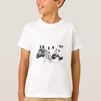 T-shirt Chevaux Arabes