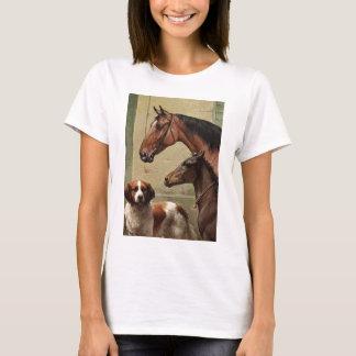T-shirt Chevaux et art de cru de St Bernard