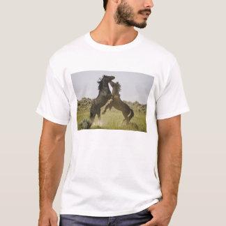 T-shirt Chevaux sauvages sauvages de caballus d'Equus de