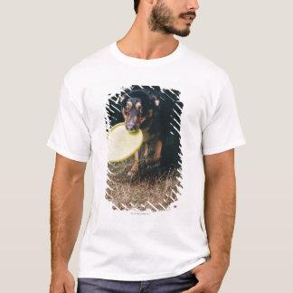 T-shirt Chien avec le frisbee dans la bouche