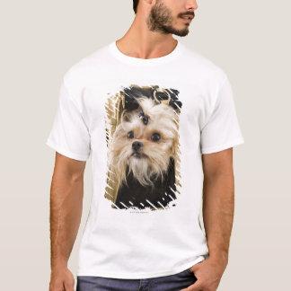 T-shirt Chien dans une bourse