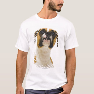 T-shirt Chien de boxeur recherchant