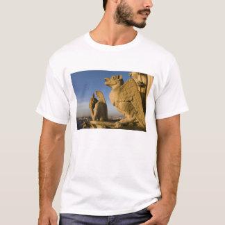 T-shirt Chimère sur la façade de la cathédrale de Notre