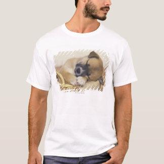 T-shirt Chiot 3