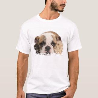 T-shirt chiot anglais de bouledogue (4 mois) et deux