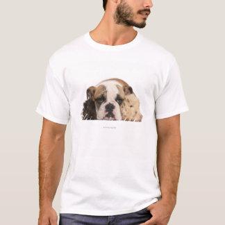 T-shirt Chiot anglais de bouledogue (4 mois) et guine deux
