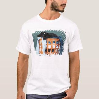 T-shirt Chiot se situant dans le panier de blanchisserie