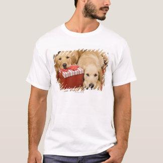 T-shirt Chiots de golden retriever avec le cadeau de Noël