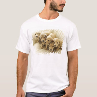 T-shirt Chiots de saucisse