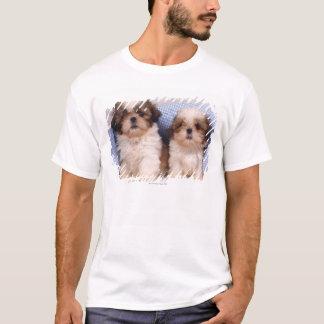 T-shirt Chiots de Shih Tzu sous une couverture vérifiée