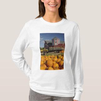 T-shirt Citrouilles à la ferme en automne près d'accord, 2