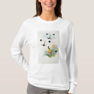 T-shirt Colibri, gravé par Walter et Cohn