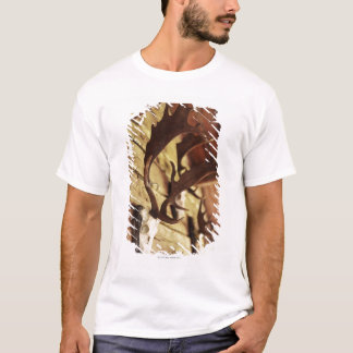 T-shirt Collection d'Antler