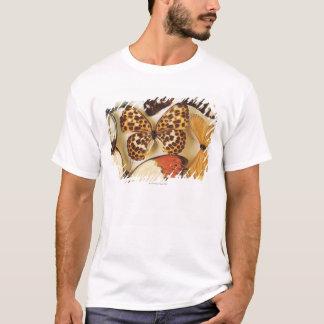 T-shirt Collection de papillon