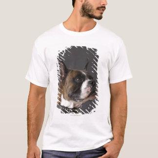 T-shirt Collier de port de chien, regardant loin