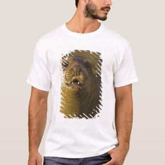 T-shirt Colonie de freux de joint d'éléphant près de San