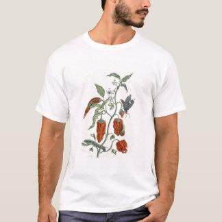 """T-shirt Consoude, """"d'un de fines herbes curieux"""", 1782"""