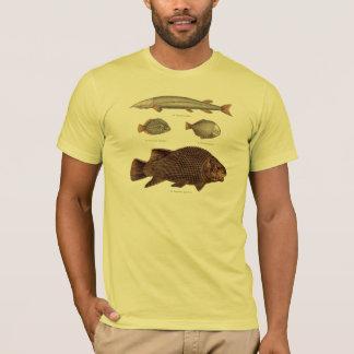T-shirt Copie préhistorique d'antiquité de poissons