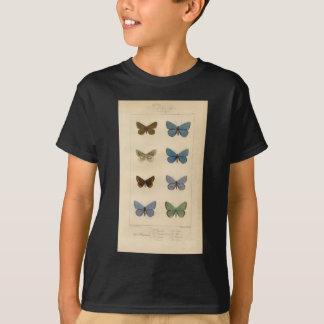 T-shirt Copie vintage - Polyommatus - mites et papillons