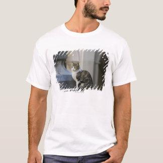 T-shirt Cordoue, Argentine
