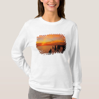 T-shirt Coucher du soleil, douze apôtres, ressortissant de
