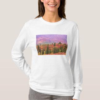 T-shirt Couleur de chute en parc national de Denali