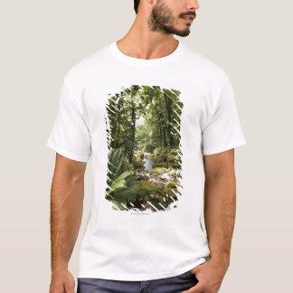 T-shirt courant dans la forêt tropicale, Dominique