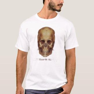 T-shirt Crâne Frac de Leonardo da Vinci