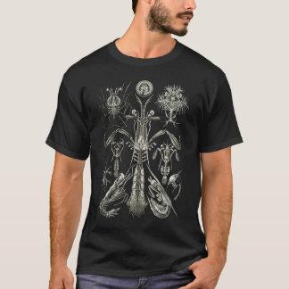 T-shirt Crevette de mante