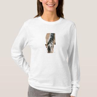 T-shirt Crinière norvégienne de fjord