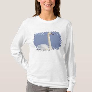 T-shirt Cygne muet, olor de Cygnus, adulte en brouillard,