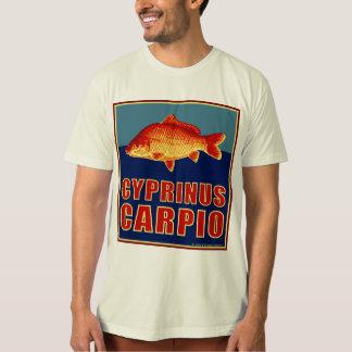 T-shirt Cyprinus Carpio