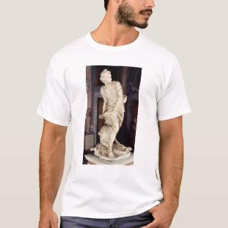 T-shirt David, 1623-24
