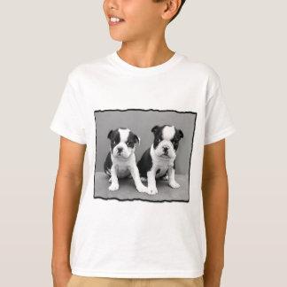 T-shirt de Boston Terrier