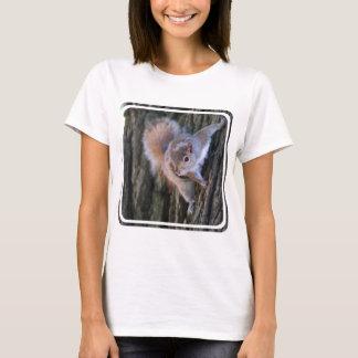 T-shirt de dames d'écureuil d'arbre