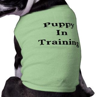 T-shirt de formation de chiot t-shirt pour chien