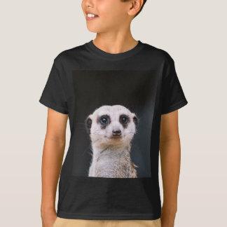 T-shirt de surveillance de Meerkat