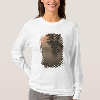 T-shirt Début de la matinée, Soleil Levant et brouillard