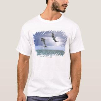 T-shirt Delfin, Delphin, Tuemmler plus brut, Tursiops 2