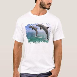 T-shirt Delfin, Delphin, Tuemmler plus brut, Tursiops 4