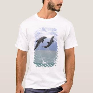 T-shirt Delfin (Tuemmler plus brut)