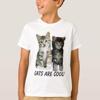 T-shirt d'enfants de chatons