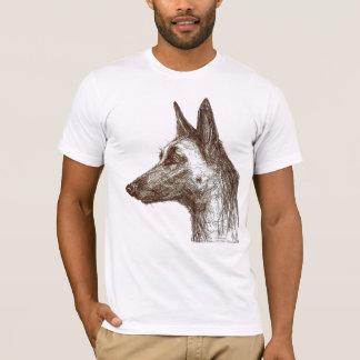 T-shirt dessin malinois