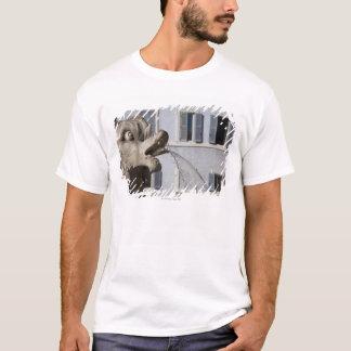 T-shirt détail des poissons sur Fontana de la Pantheon