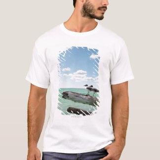 T-shirt Deux mouettes se reposant sur un arbre mort