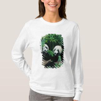 T-shirt Deux pandas mangeant le bambou ensemble, Wolong, 2