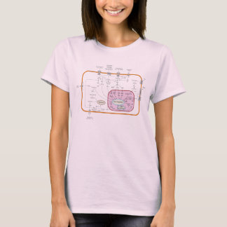 T-shirt Diagramme de voies de transduction de signal de