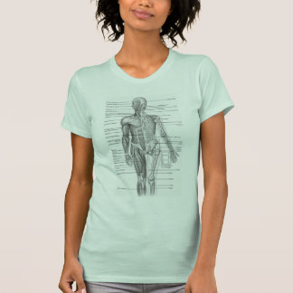 T-shirt Diagramme humain d'anatomie