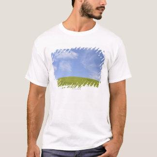 T-shirt d'Orcia de Val, Toscane, Italie 2