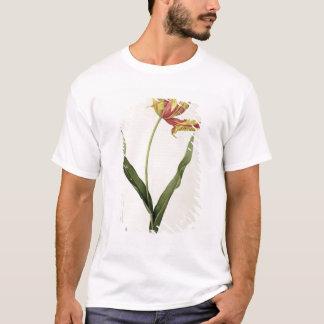 T-shirt Dracontia de gesneriana de Tulipa, de 'Les